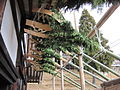 Todai-ji Nigatsu-do National Treasure 国宝東大寺二月堂50.JPG