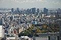 Tokyo 2008-11-19 (3104529323).jpg