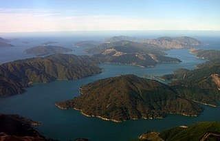 Marlborough Sounds network of sea-drowned valleys