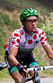 Tour de France 2012, voeckler (14869545742) (cropped).jpg