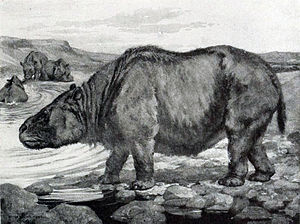 Toxodon - Restoration of T. platensis