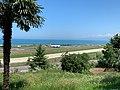 Trabzon Jun 2020 15 32 36 435000.jpeg