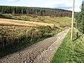 Track to Lockerbrook Farm - geograph.org.uk - 1048119.jpg