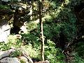 Trail P8150072.JPG