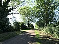 Trent Lane approaching the Trent - geograph.org.uk - 1320767.jpg