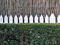 Triple Fence (8922409087).jpg