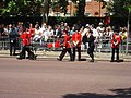 Trooping the Colour 2009 038.jpg