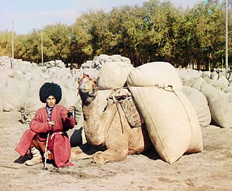 History of Central Asia - A native Turkmen man in traditional dress with his dromedary camel in Turkmenistan, c. 1915.
