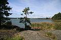 Turku - Ruissalo Island (6119383531).jpg