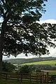 Tyne Valley, from Cherryburn - geograph.org.uk - 916472.jpg