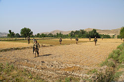 U.S. Soldiers with Echo Company, 2nd Battalion, 506th Infantry Regiment, 4th Brigade Combat Team, 101st Airborne Division make their way across a field June 2, 2013, during a mission in Khost province 130602-A-DQ133-181.jpg