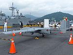 UAV 9717 Display at No.11 Pier Left Rear View 20130504.jpg