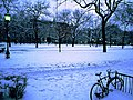 UChicago winter quads.JPG
