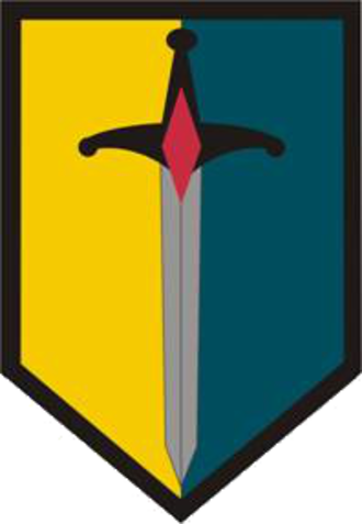 1st Maneuver Enhancement Brigade - 1st Maneuver Enhancement Brigade shoulder sleeve insignia