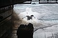 US Navy 060407-N-4772B-009 Amphibious Assault Vehicles (AAV) assigned to the 31st Marine Expeditionary Unit (MEU) make their way out of the well deck.jpg