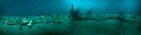 U -85 wreck photomosaic.jpg