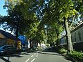 Unna, Germany - panoramio (21).jpg