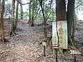 Usayamajo01.jpg