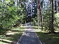 Utena, Lithuania - panoramio (47).jpg