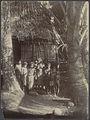 UvA-BC 300.431 - Siboga - inheemse bevolking van Tobadi, gelegen aan de Humboldt Baai op Noord Nieuw-Guinea.jpg