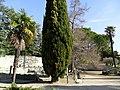 Vaison Roman ruins - panoramio (24).jpg