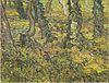 Van Gogh - Unterholz mit Efeu2.jpeg