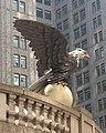Vanderbilt Eagle low jeh.jpg