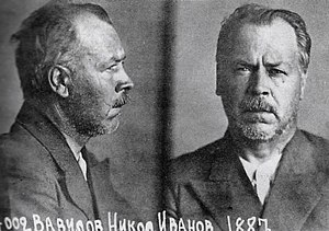 Nikolai Vavilov - Botanist Nikolai Vavilov's mugshot, taken at the time of his arrest.