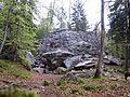 Veduta del masso della palestra di roccia nel bosco - Foppiano di Crodo (Verbano-Cusio-Ossola) - 2017-04-24.jpg