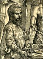 Andreas Versalio.