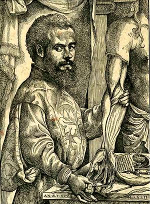 Andreas Vesalius - A portrait of Vesalius from De humani corporis fabrica