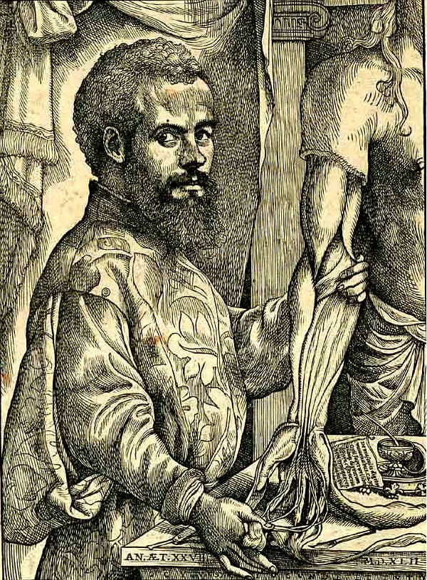 Vesalius Portrait pg xii - c