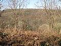 View across the Pentaloe Valley - geograph.org.uk - 1205495.jpg