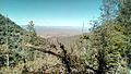 View from Pinal Mountains..jpg