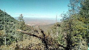 Pinal Mountains - Image: View from Pinal Mountains