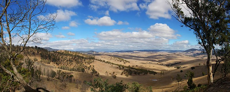 Fil:View from macmillans lookout - benambra.jpg