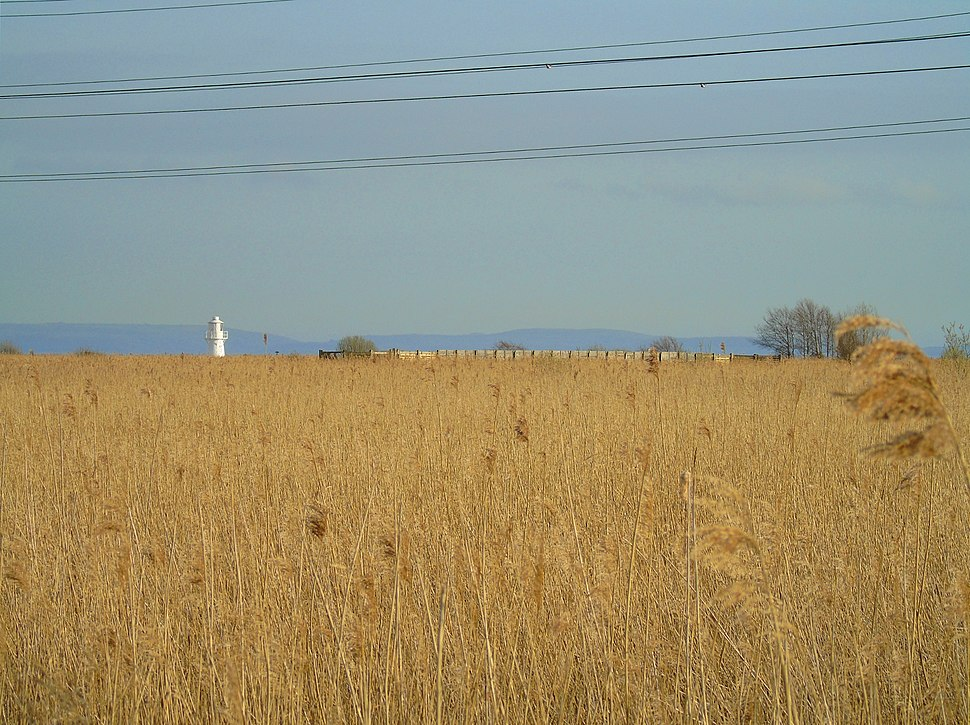 View of Lighthouse and Fenced Overpass at Newport Wetlands RSPB Reserve