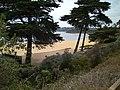View to the beach in Mornington.jpg
