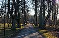 Vihterpalu mõisa park, 19.-20.saj.*.JPG