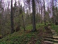 Vikmestes pilskalns, Sigulda.jpg