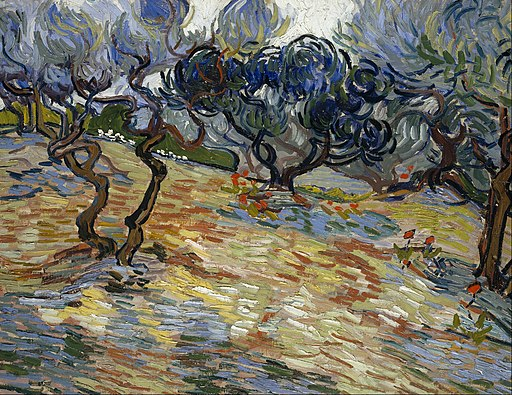 Vincent van Gogh - Olive Trees - Google Art Project