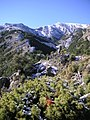 Vistas de La Maroma - panoramio.jpg