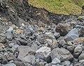 Volcanic rocks in the valley near Manganui Ski Area 10.jpg