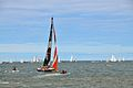 Volvo Ocean Race 2014-2015 (18368924443).jpg