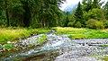 Wallowa River in Northeastern Oregon (37832936781).jpg