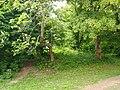 Wandowo, stary cmentarz - panoramio (2).jpg