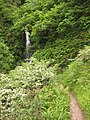 Waterfall on Hollow Brook - geograph.org.uk - 1603961.jpg