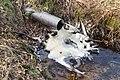 Wateruitstroom bij -8° Celsius. Locatie, Natuurterrein De Famberhorst 04.jpg