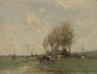 Weide met koeien
