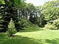 Wellesley College Botanic Gardens - DSC09781.JPG